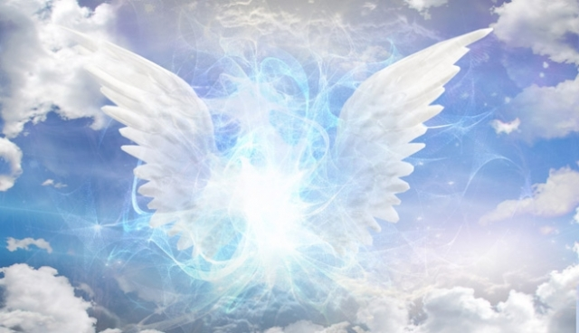 blog_thumb-02022016122357-658-width-angels